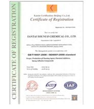 ISO9001zhi量管理体系认证(英)