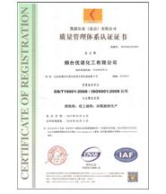 ISO9001zhi量管理体系认证